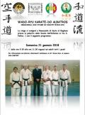 [Stage di Karate Wado-Ryu]