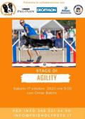 [Stage di Agility]
