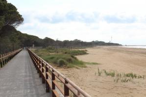 [Dalla prossima estate, l'intera costiera bibionese avrà un percorso ciclopedonale ]