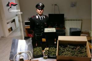 [Droga, arrestato 35enne di Lugugnana]