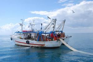 [Quasi un milione e mezzo di euro di bandi per la pesca]