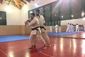 [Le tecniche base e il metodo del M° Iwasaki X Dan protagoniste del 2° Stage di karate Wado Ryu]