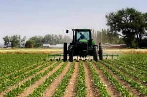 [Vegal, più di 128 mila euro di contributo per aziende agricole del territorio]