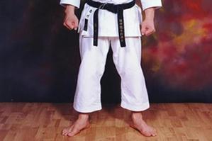 [Wado Ryu Karate - Tai Chi: due lezioni gratuite a Teglio]
