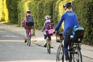 """[""""Friday for Future"""", tutti a scuola a piedi o in bicicletta a Pramaggiore]"""