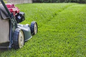 [Asvo, raccolta erba e ramaglie dal 23 al 30 maggio]