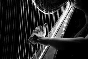 [Duo d'arpa in concerto per gli operatori sanitari dell'ospedale di Portogruaro]