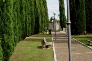 [San Michele, acquistate 24 nuove scale per i cimiteri del territorio]