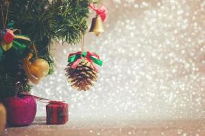 """[""""Mostra il tuo Natale"""", il concorso natalizio degli Amici del Collegio Marconi ]"""