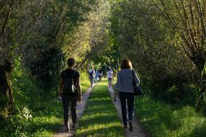 [Una passeggiata alla scoperta delle praterie vallive di Fossalta]