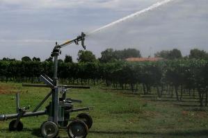 [Veneto orientale e siccità: nelle aziende agricole aumento del 10% del consumo di acqua]